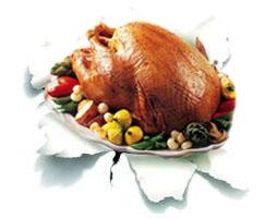turkeypunch